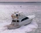 Best Charter Boat in Charleston